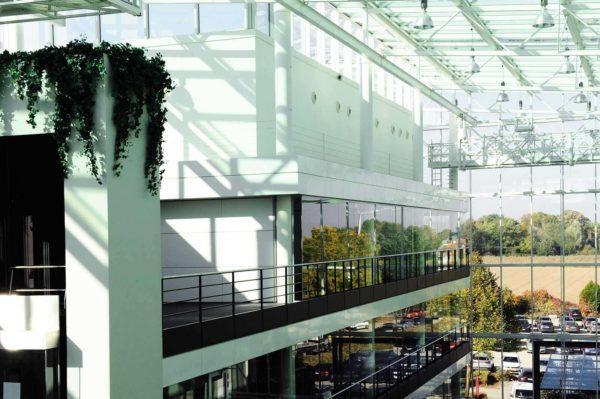 hub-windows-plant